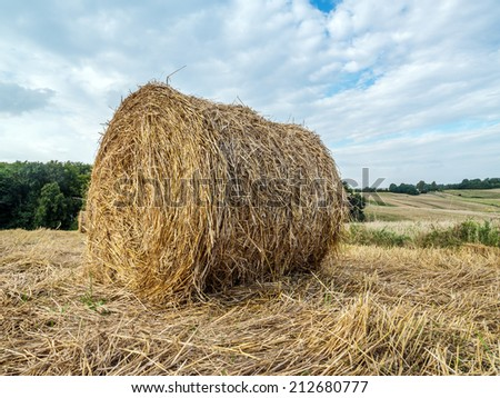 Hay bale drying on the open air - stock photo