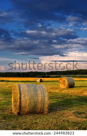 Hay Bale Farm - stock photo