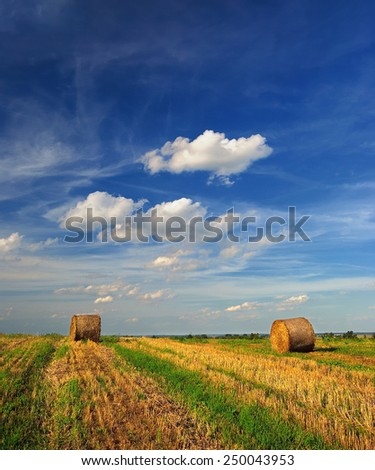 Hay bale farm / Hay bales on the field after harvest, Hungary - stock photo
