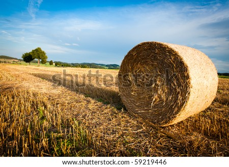 Hay Bale on a harvested Field on late Afternoon - stock photo