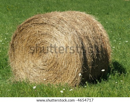 hay bale roll - stock photo