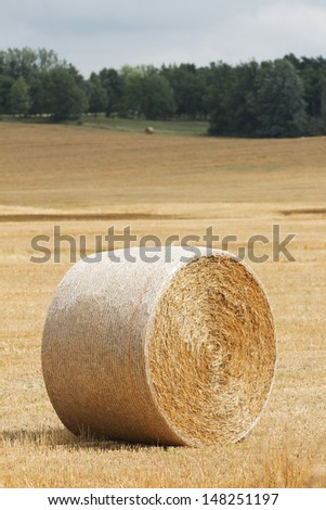 Hay Bale Roll in Field - stock photo
