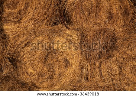 Hay bale spirals - stock photo