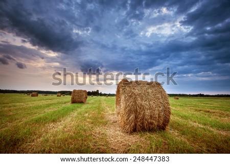 Hay bales at sunset - stock photo