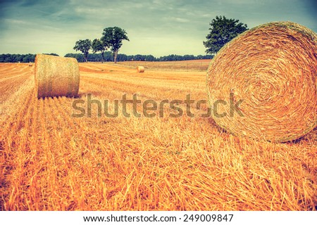 Hay bales in a field in autumn sunrise landscape photo with vintage effect - stock photo
