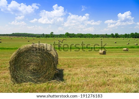 hay bales in green countryside - stock photo