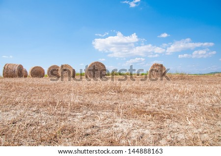 hay bales in orcia valley - stock photo