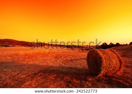 Hay Bales in the Tuscan hills at dusk. - stock photo