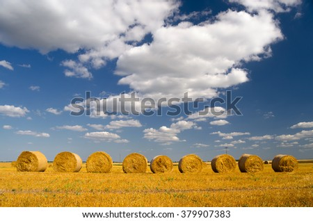 Hay bales on the agricultural field after summer harvest. - stock photo