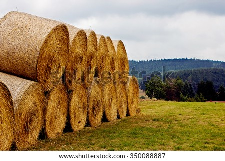 Hay bales on the field after harvest. A stack of hay. - stock photo