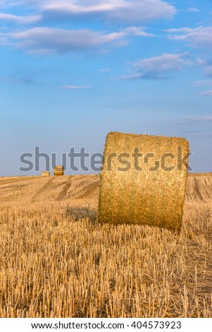 Hay bales on the field after harvest, Hungary - stock photo