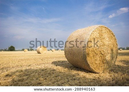 Hay bales on the field after harvest, Italy - stock photo