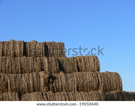 Hay bales on the sky background - stock photo