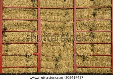 Hay bales piled within a cart with red metal bars - stock photo