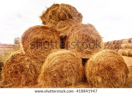 Hay bales pyramid on the field at summer time. Agriculture background and concept. Space for text. - stock photo