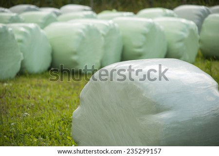 hay bales wrapped in plastic foil  - stock photo