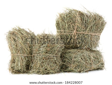 Hay, isolated on white - stock photo