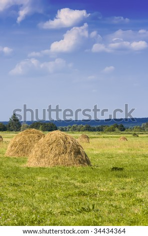 Hay pile in the meadow - stock photo