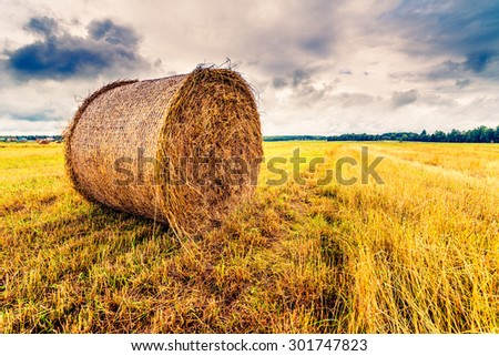 Haystack in the field before the storm, close up view. Focus on the haystack, image in the yellow-blue toning - stock photo