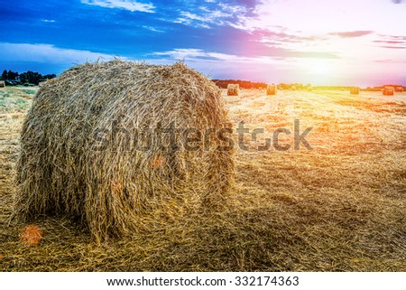 Haystack on an autumn field against the setting sun. - stock photo
