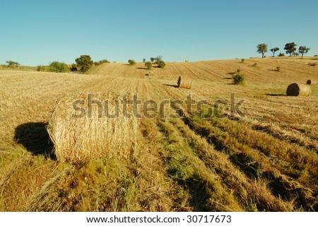 Haystacks field in summer - stock photo
