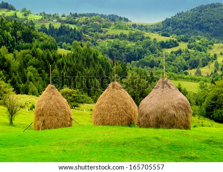 haystacks in the background of the mountains - stock photo