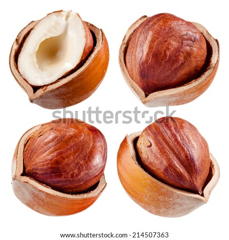 Hazelnut collection - stock photo