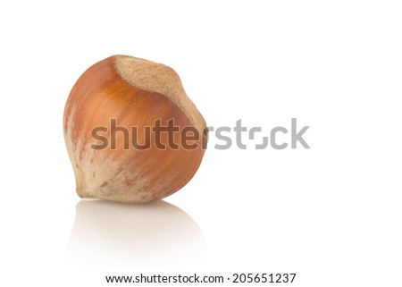 Hazelnut Isolated on white background - stock photo