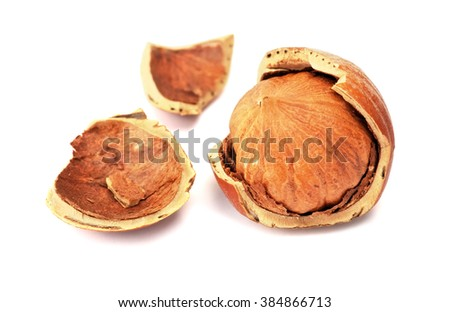 Hazelnut or filbert nut isolated on white background. Broken nut, close-up  - stock photo