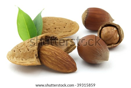 Hazelnuts and almond with leaves - stock photo