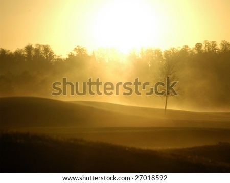 Hazy florida morning - stock photo