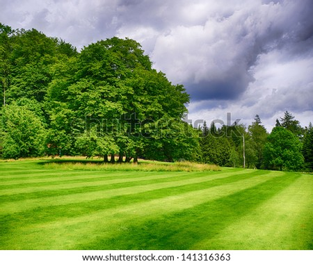 HDR Tree on a green field - stock photo