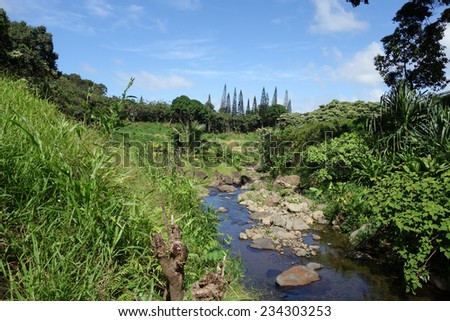 He'eia Stream filled with large boulders, rocks, and surrounded by trees and plants on Oahu, Hawaii. - stock photo