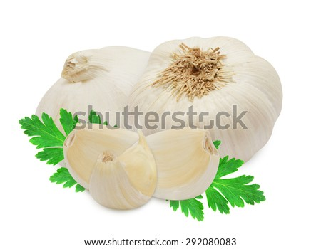 Head of garlic and clove with sprig of fresh green parsley isolated on white background. Design element for product label. - stock photo