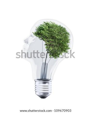 Head shaped bulb with a tree inside - stock photo