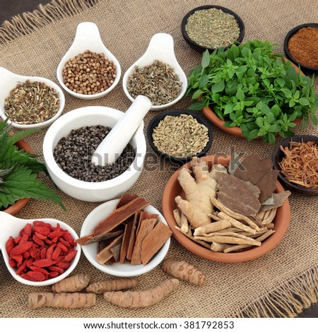 Healing herb and spice selection used in natural alternative herbal medicine for men over hessian background. Selective focus. - stock photo