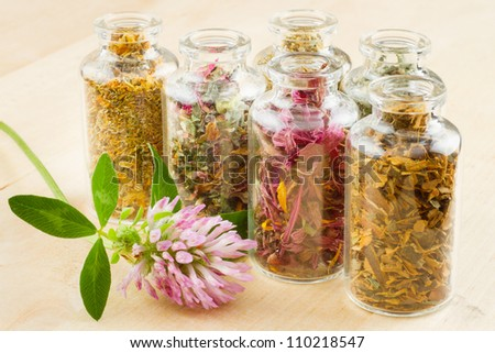 healing herbs in glass bottles, herbal medicine - stock photo