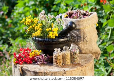 healing herbs in mortar and in sack, herbal medicine - stock photo