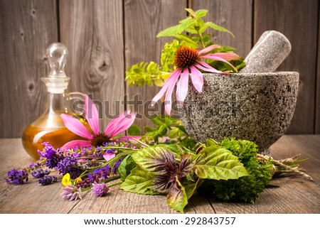 Healing herbs with mortar and bottle of essential oil on wood. Alternative medicine concept - stock photo