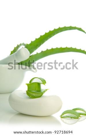 health-care and body treatment with aloe vera - stock photo