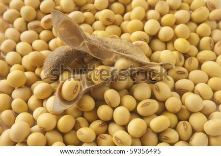 health food-soybean - stock photo
