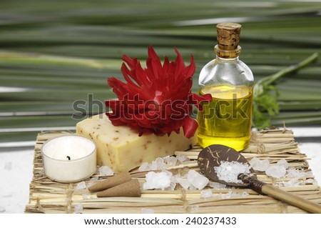 Health spa on mat-green plant background - stock photo
