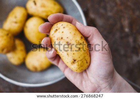 Healthy And Tasty New Potatoes In Female Hand Vegan Food - stock photo