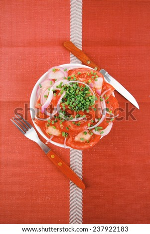 healthy appetizer : fresh tomato salad with onion and chives in white bowl over red cloth - stock photo