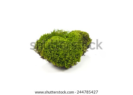 Healthy concept - stock photo