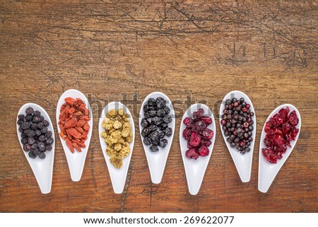 healthy dried berry collection (blueberry, mulberry, cherry, goji, elderberry, chokeberry,) cranberry on  ceramic spoons against rustic wood with a copy space - stock photo