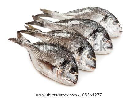 Healthy eating seafood - raw gilt-head fish food heap white isolated - stock photo