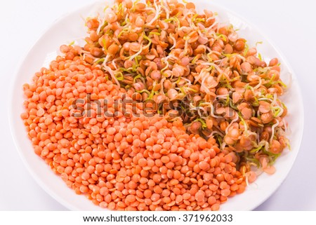 healthy food, a mixture of raw red lentils and sprouts on white - stock photo