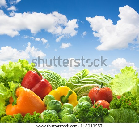 Healthy food landscape against blue sky. Mixed vegetables. - stock photo