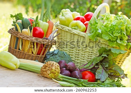 Healthy food - organic vegetables - stock photo